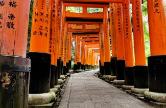 Large gates at Fushimi Inari
