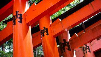 Red gates at Fushimi Inari