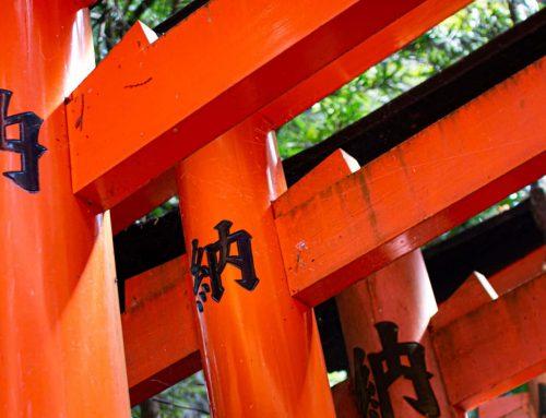 Photos from my recent trip to Japan, Part 3: Fushimi Inari hike
